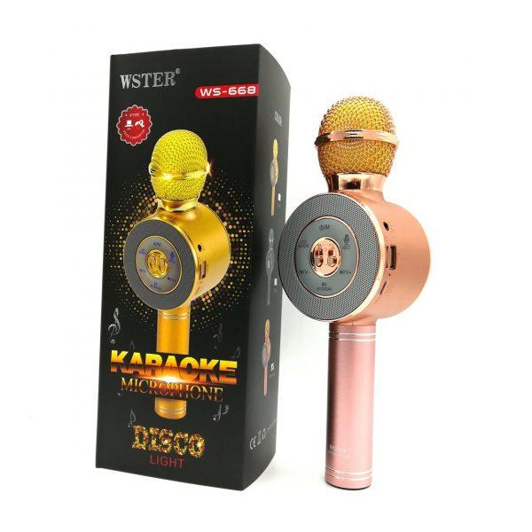 Karaoke mikrofon model WS-668